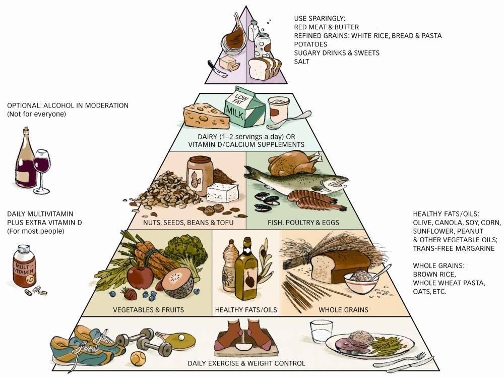 Piramida żywienia, Harvardzka Szkoła Zdrowia Publicznego (USA)